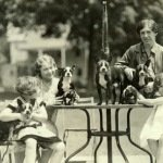 Adirondack Museum Hosts Dog Days Saturday