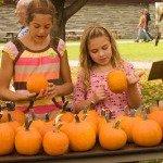 Adirondack Museum Hosts Harvest Fest