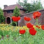 Fort Ticonderogas Kings Garden Open