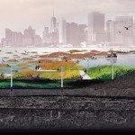 Sink or Swim? Post-Sandy Waterfront Restoration