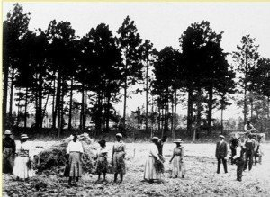 In the 1850's, black families came to the Adirondacks to farm.